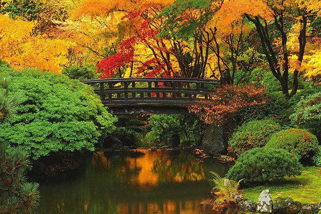 Image credit - oregonlive.com