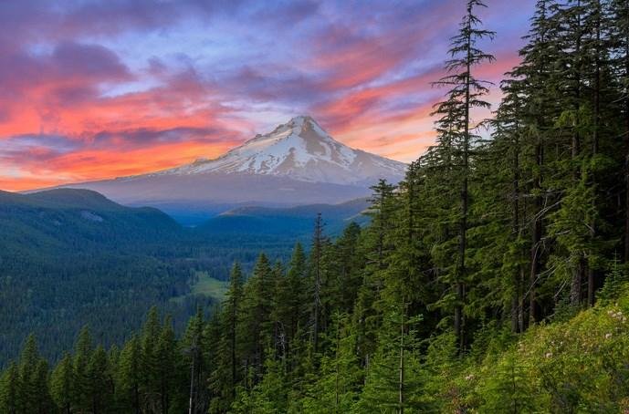 Image credit - KOA Campgrounds