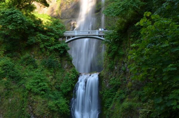 Image Credit Oregonlive.com