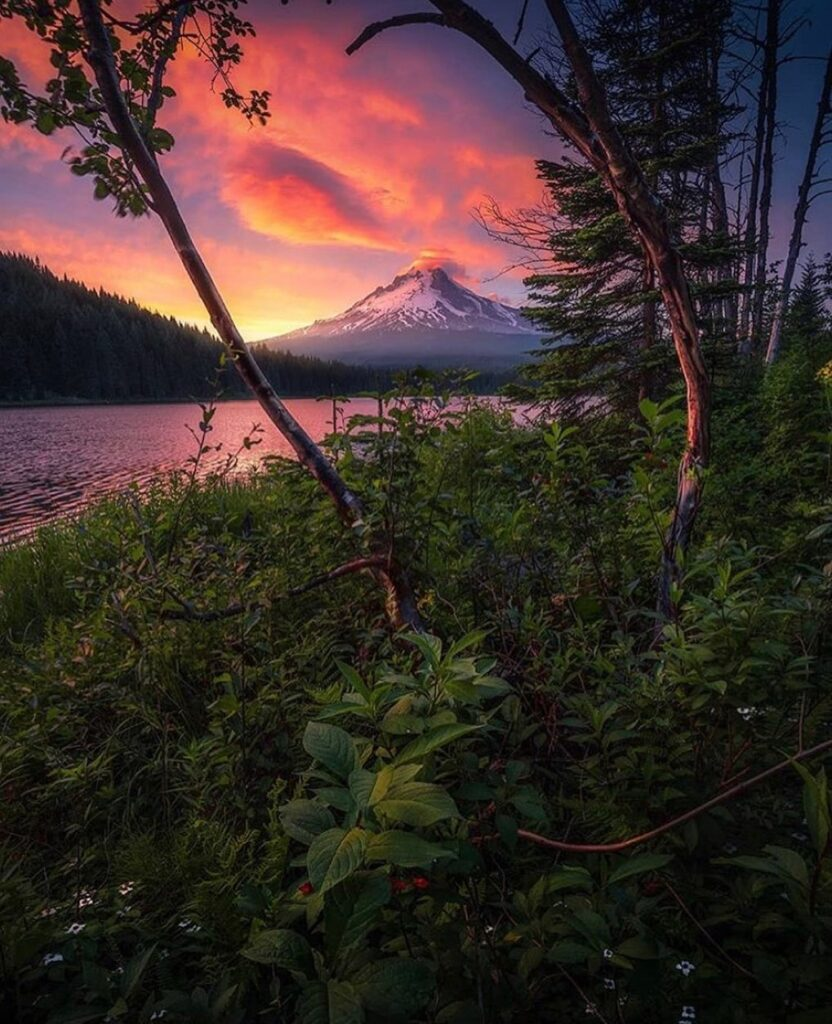 Beautiful Oregon — photo by @davidgayphotography