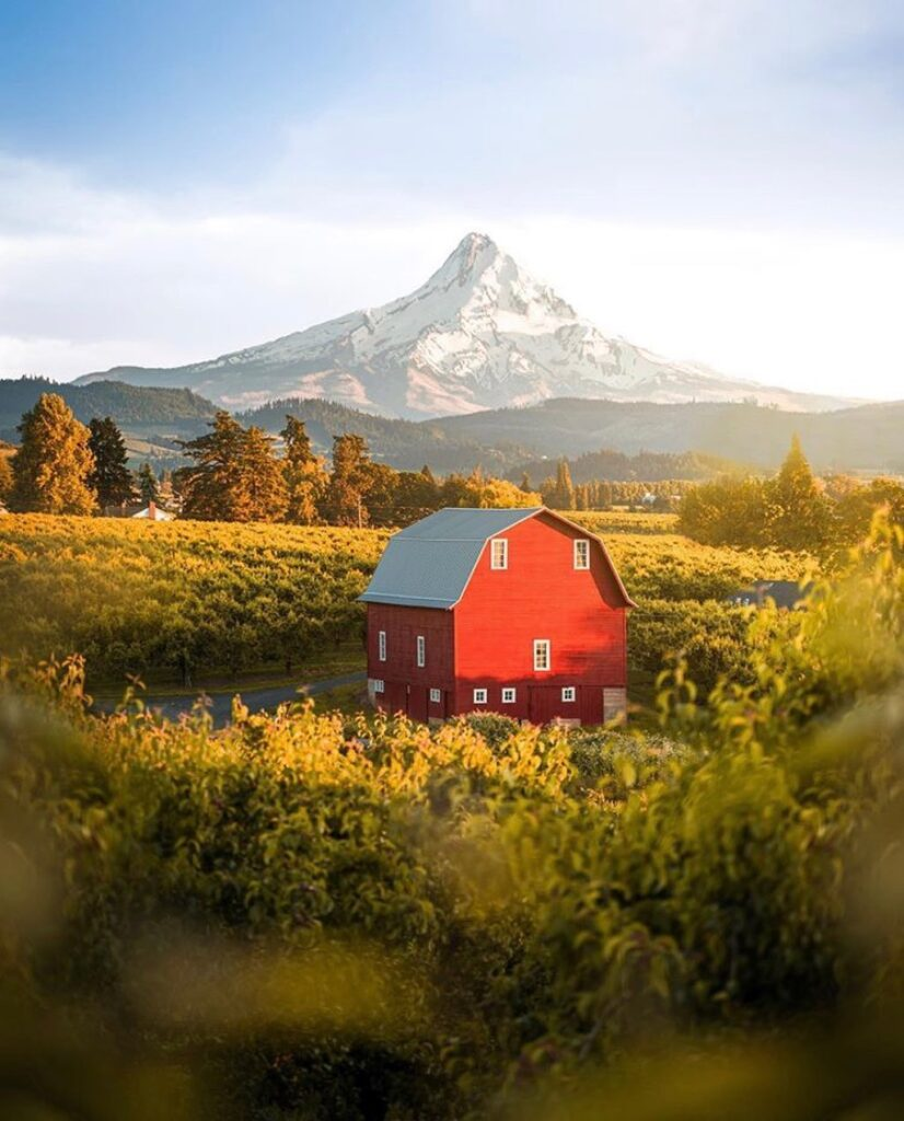Mt Hood Oregon - photo by @v_outdoors