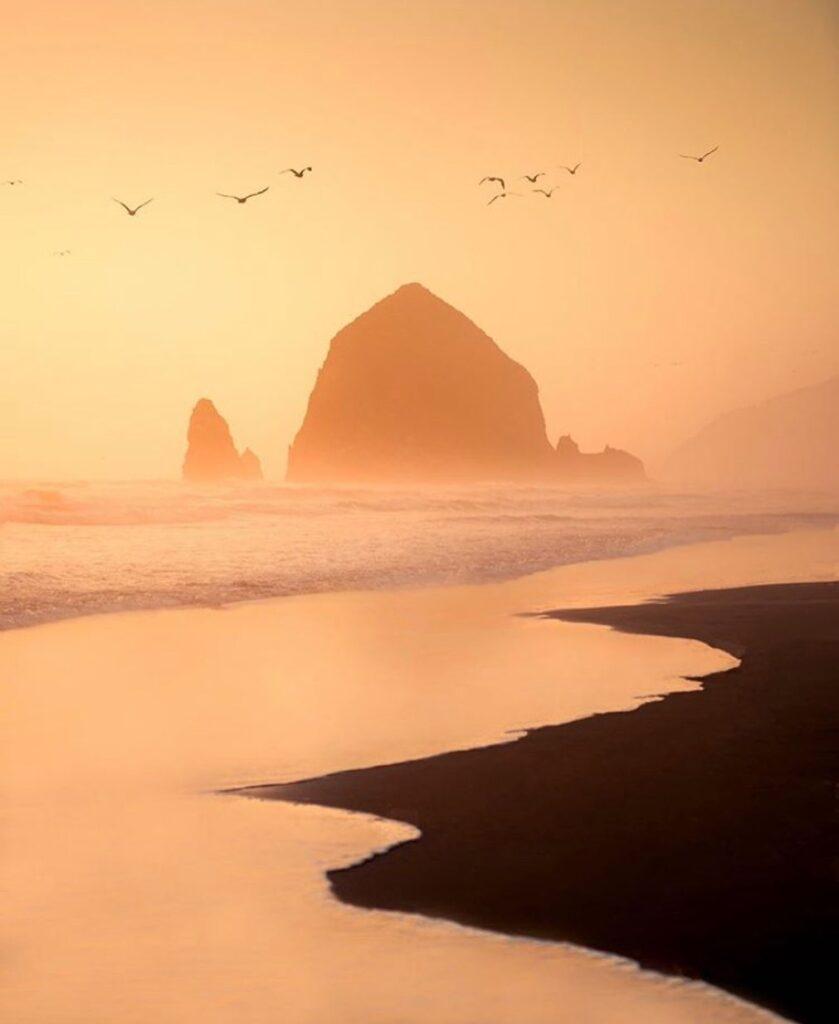 Oregon Coast - photo by @wildbonde
