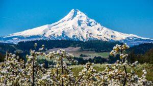 Oregon Sight Seeing