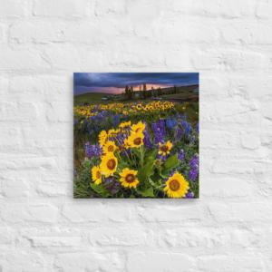 SPRING FLOWERS - 16X16 Canvas Wrap Print