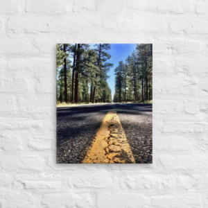 OREGON ROAD - 16X20 Canvas Wrap Print