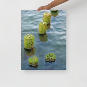 COLUMBIA RIVER PILINGS - 18X24 Canvas Wrap Print