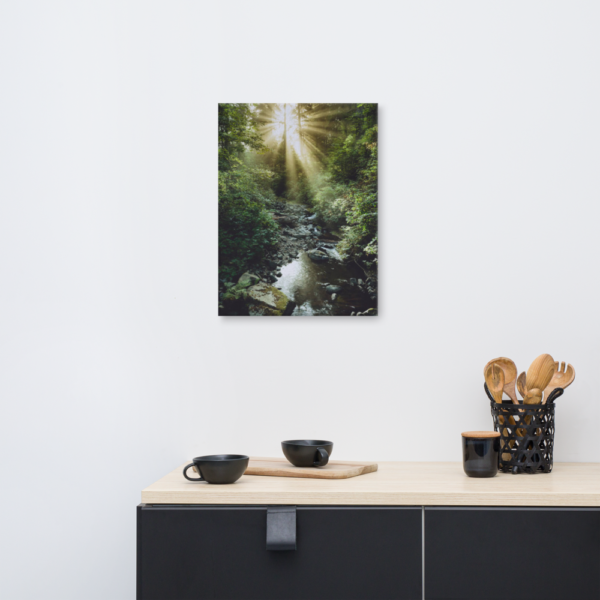 SUNLIGHT IN THE WOODS - 18X24 Canvas Wrap Print