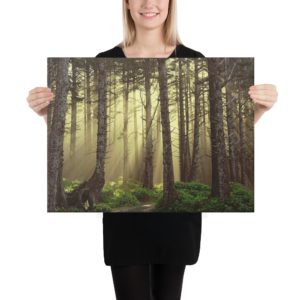 IN TO THE WOODS - 18X24 Canvas Wrap Print
