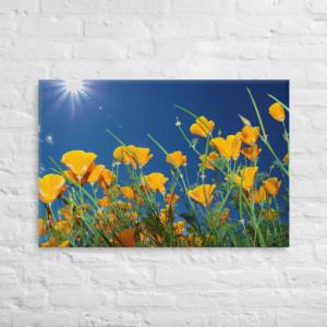 WILD FLOWERS - 24X36 Canvas Wrap Print