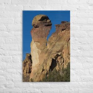 MONKEY FACE - 24X36 Canvas Wrap Print