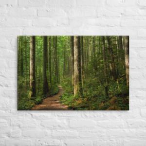FOLLOW THE TRAIL - 24X36 Canvas Wrap Print